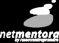 NetMentora